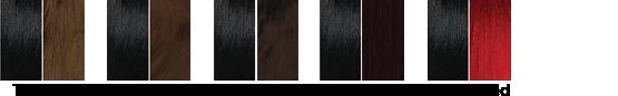 Charte couleur Sleek T