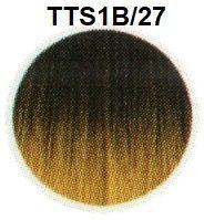 TTS1B/27