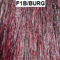 F1B/BURG