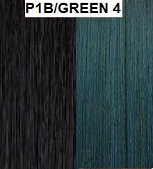 P1B/GREEN 4