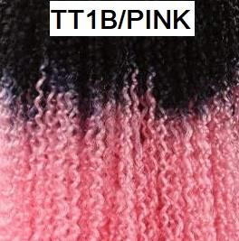 TT1B/PINK1